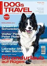 dogs-and-travel-cover